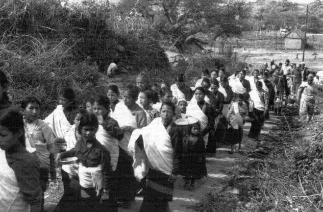 Mohani A group of Jyapu women going on the twice-daily visit to the day's mandalic pith image
