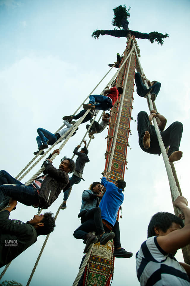 People trying to climb the pole after being erected image