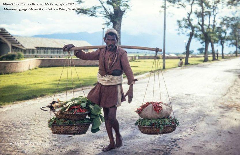 man carrying vegitables on the road of Thimi, Bhaktapur image
