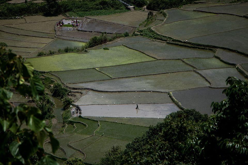 https://www.bhaktapur.com/wp-content/uploads/2020/06/Amit-Machamasi-1.jpg