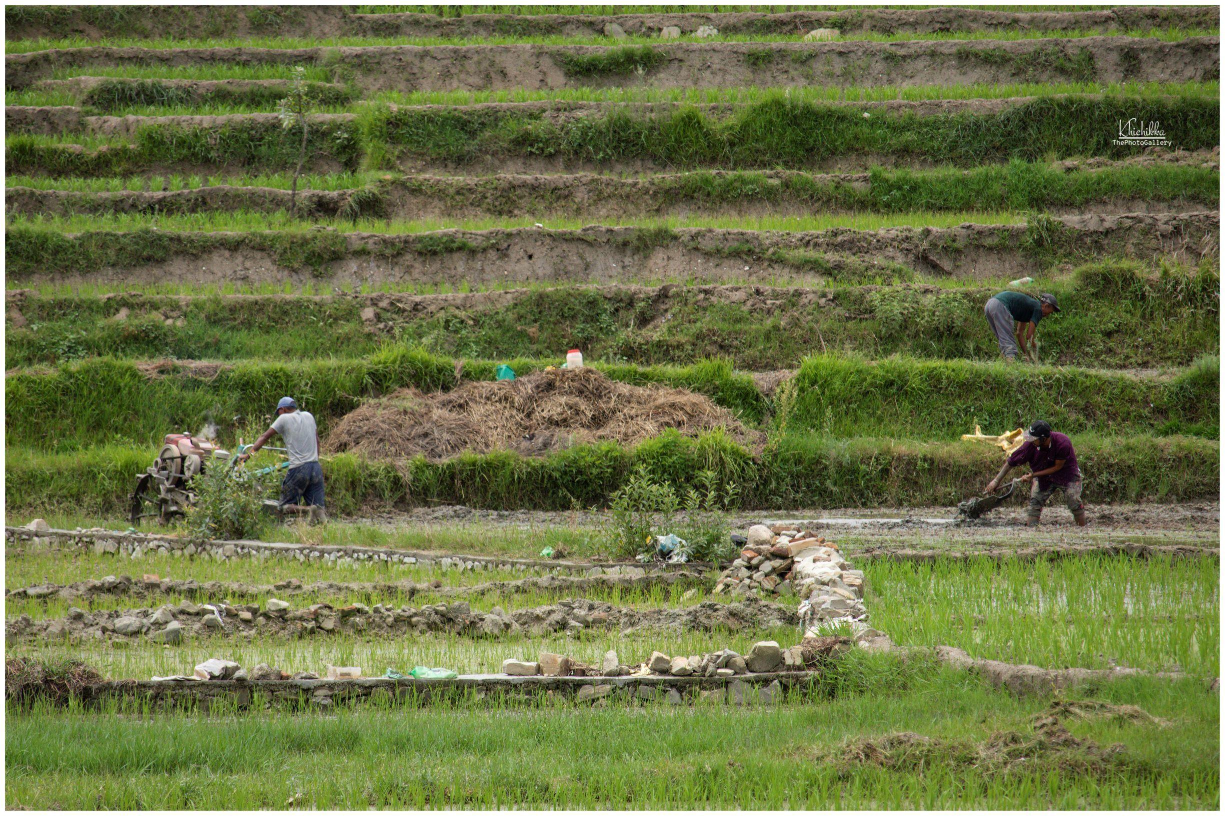 https://www.bhaktapur.com/wp-content/uploads/2020/06/saurav-Bajracharya-resized-2.jpg