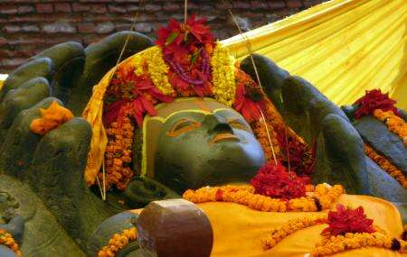 Haribodhini Ekadashi image
