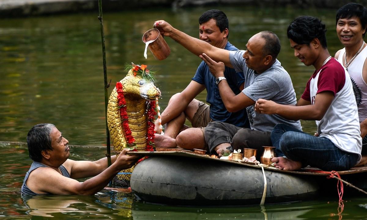 Naag Panchami image